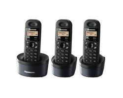 Điện thoại Panasonic KX-TG1313